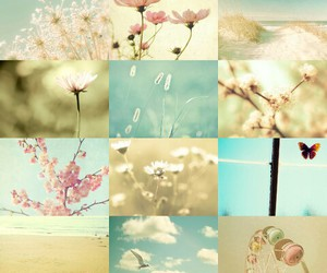 butterfly, flowers, and beach image