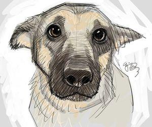 dog drawing image