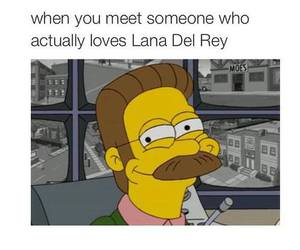lana del rey, funny, and text image