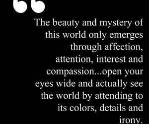 affection, attention, and colours image