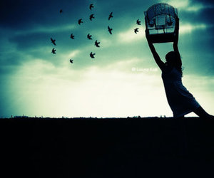 birds, girl, and release image