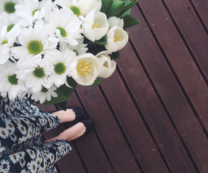 birthday, tulips, and floral image