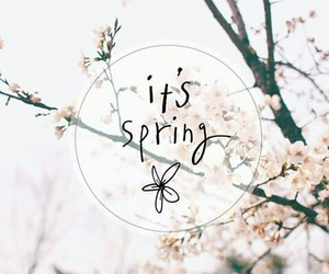 spring, flowers, and quote image