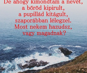 hungarian, quote, and magyar image