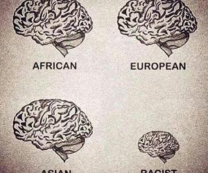 racist, brain, and racism image