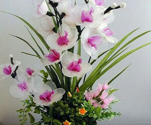 flower, orchid, and pink image