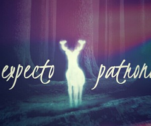 expecto patronum, harry potter, and james potter image