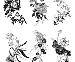 bw, flora, and floral image