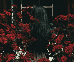 flowers, red, and hair image