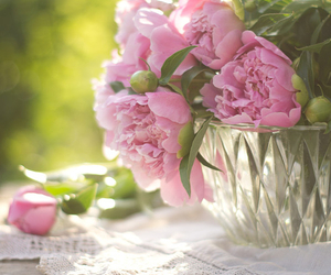 flowers, pastel, and peonies image