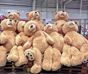 beautiful, teddy, and love image