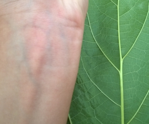 green, grunge, and veins image