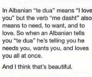 albanian, love, and te dua image