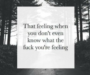 feelings, true, and quote image