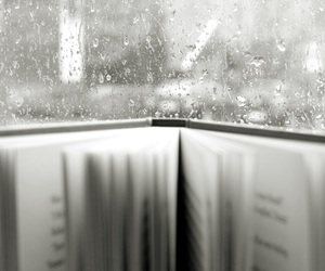 book, reading, and cosy image