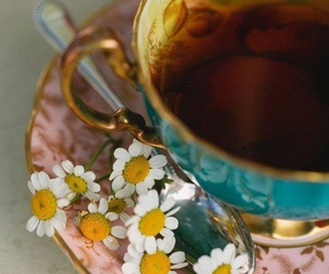 tea, flowers, and daisy image