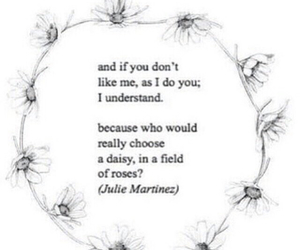 daisy, quotes, and rose image