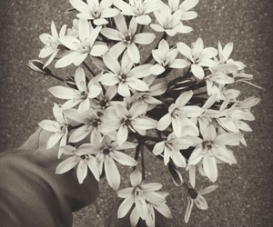alternative, black and white, and flowers image