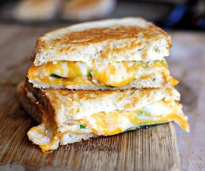 sandwich and grilled cheese image