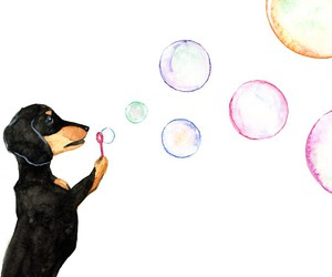 animal, art, and blowing bubbles image
