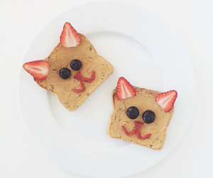 blueberries, breakfast, and cat image