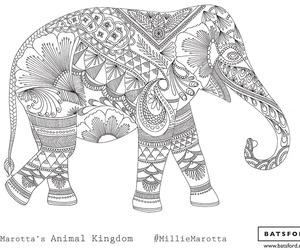 blackandwhite, colouringbook, and elephant image