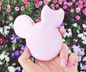 pink, disney, and flowers image