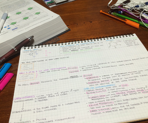 fun, notes, and study image