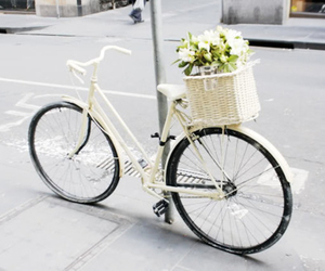 bike, flowers, and white image