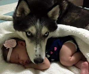 baby, guardian, and love image