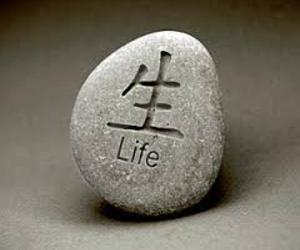 life and rock image