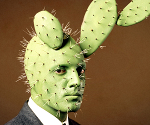 cactus, cool, and funny image