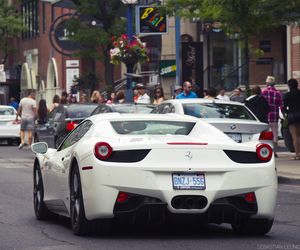 canada, car, and exotic image