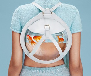 fashion, fish, and backpack image
