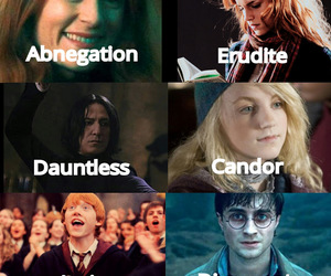amity, harry potter, and hermione granger image