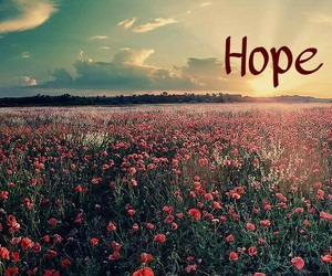 flowers, hope, and life image