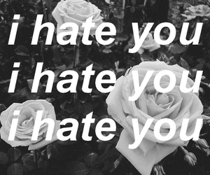 hate, flowers, and rose image