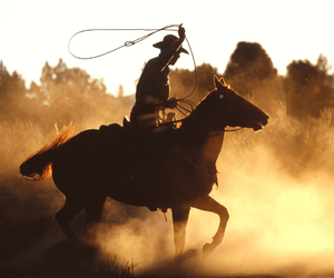 horse, western, and cowboy image