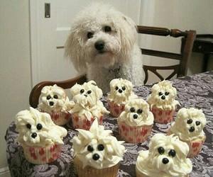 dog, cupcake, and puppy image