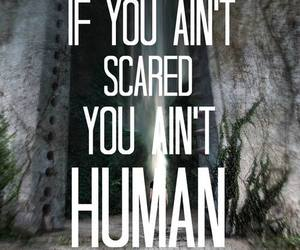 quote, the maze runner, and maze runner image