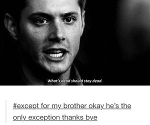 dean, supernatural, and Sam image
