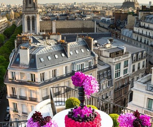 paris, city, and flowers image
