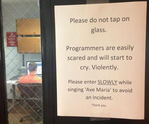 funny, programmers, and text image