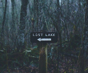 lost, lake, and forest image