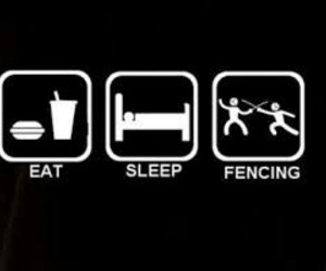 day, eat, and fencing image