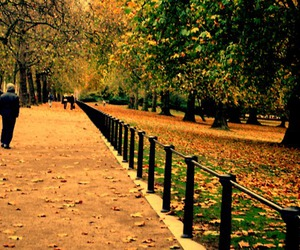 autumn, london, and trees image