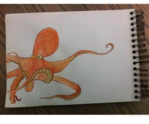 aquarelle, draw, and pieuvre image