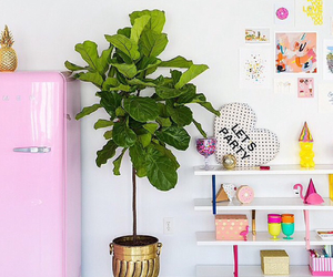 decoration, pink, and love image