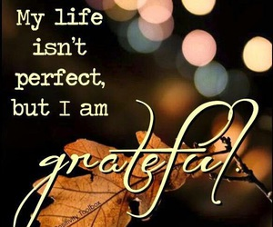 quote, grateful, and life image