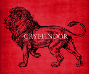 gryffindor, harry potter, and lion image